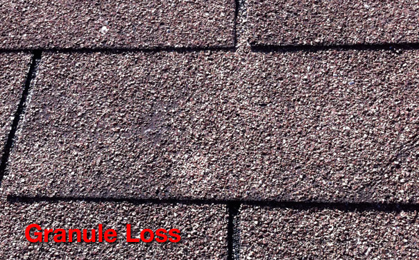 JW Roofing Replace Roof Replacement Roof New Roof – Shingle Roof Replacement